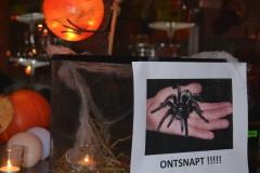 halloween_2012_073